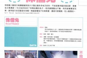 Lisa 月刊(271期〉 多多龍 - 兔兔訪問